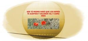Aprender a decir NO - Foto Consuelo Tomás 01-03-2018 - psicológos Valencia - hablidades sociales - asertividad - terapia psicológica Valencia - ansiedad - depresión- sexo